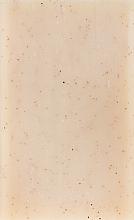 Naturalne mydło peelingujące w kostce - Baylis & Harding Goodness Sea Kelp & Peppermint Natural Bar Soap — фото N2