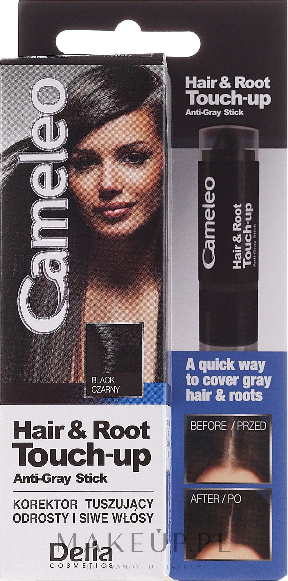 Korektor tuszujący odrosty i siwe włosy - Delia Cameleo Hair & Root Touch-Up Anti-Grey Stick — фото Black