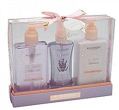 Kup Zestaw do pielęgnacji ciała Lawenda - Cassardi Lavender (sh/gel 200 ml + b/balm 200 ml + mist 100 ml)