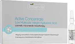 Aktywny koncentrat z niskocząsteczkowym kwasem hialuronowym - Bielenda Professional Meso Med Program — фото N1