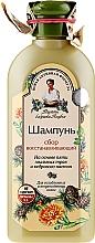 Kup Regenerujący szampon do włosów słabych i zniszczonych - Receptury Babci Agafii