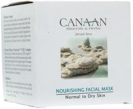 Kup Odżywcza maska do skóry normalnej i suchej - Canaan Minerals & Herbs Nourishing Facial Mask Normal to Dry Skin