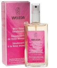 Dezodorant w sprayu z dziką różą - Weleda Wild Rose Deodorant — фото N1