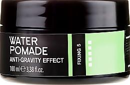 Kup Modelująca pomada do włosów i brody dla mężczyzn - Niamh Hairconcept Dandy Anti-Gravity Effect Water Pomade