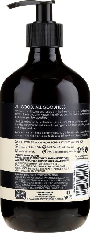 Naturalne mydło w płynie do rąk - Baylis & Harding Goodness Lemongrass & Ginger Natural Hand Wash — фото N2
