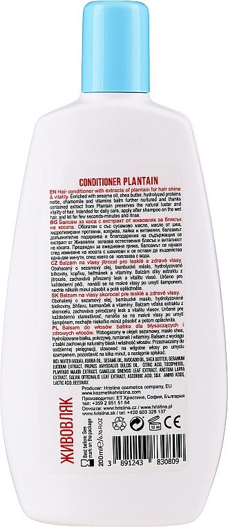 Naturalna odżywka wzmacniająca do włosów Babka - Hristina Cosmetics Shine Hair Conditioner  — фото N2