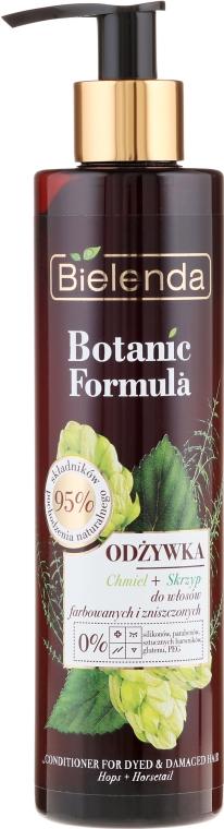 Odżywka do włosów farbowanych i zniszczonych Chmiel + skrzyp - Bielenda Botanic Formula — фото N1