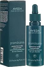 Kup Ochronny koncentrat do skóry głowy - Aveda Pramasana Protective Scalp Concentrate