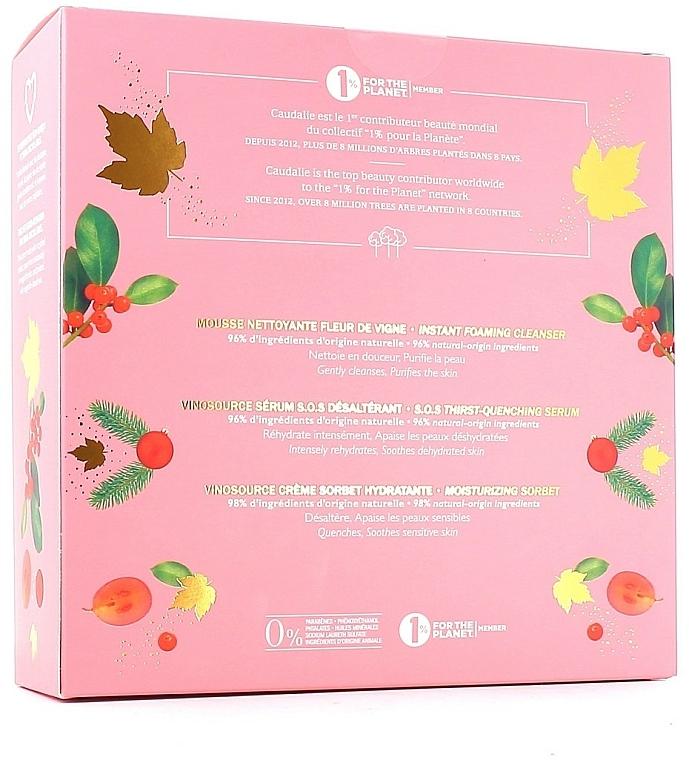 Zestaw - Caudalie Vinosource Les Indispensables Hydratation (clean/mousse 50 ml + serum 10 ml + cream/sorbet 40 ml) — фото N3