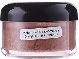 Kup Puder rozświetlająco-brązujący - Kryolan Bronzing Powder