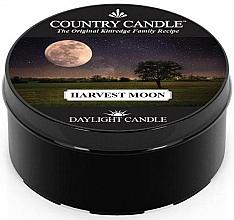 Kup Podgrzewacz zapachowy - Country Candle Harvest Moon Daylight