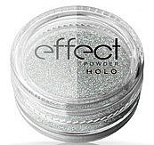 Kup Pyłek do zdobienia paznokci - Ronney Professional Holo Effect Nail Art Powder