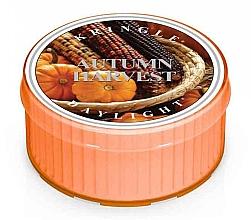 Kup Podgrzewacz zapachowy - Kringle Candle Autumn Harvest Daylight
