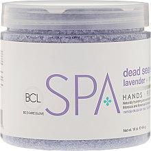 Kup Nawilżająca sól z Morza Martwego do rąk, stóp i ciała Lawenda i mięta - BCL Spa Lavender Mint Salt Soak