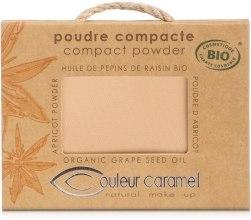 Puder w kompakcie - Couleur Caramel Compact Powder — фото N1
