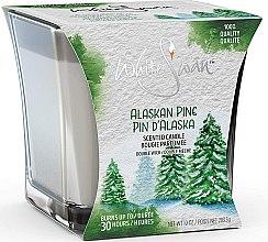 Kup Świeca zapachowa Sosna - White Swan Alaskan Pine