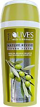 Kup Regenerujący szampon do włosów z oliwą z oliwek - Nature of Agiva Olives Hair Shampoo