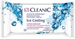 Kup Odświeżajace chusteczki nawilżane z płynem antybakteryjnym, 15 szt. - Cleanic Ice Cooling Wipes