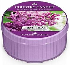 Kup Podgrzewacz zapachowy - Country Candle Fresh Lilac Daylight