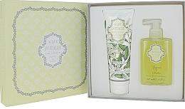 Kup Acque di Italia Zagara di Sicilia - Zestaw (sh/gel 250 ml + soap 300 ml)