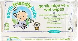 Kup Chusteczki oczyszczające dla dzieci - Earth Friendly Baby Aloe Vera Wet Wipes