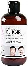 Kup Odżywczo-regenerujący szampon-eliksir do włosów Paczula wonna - WS Academy Wierzbicki & Schmidt