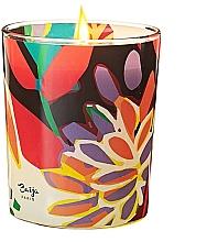 Kup Świeca zapachowa - Baija Vertige Solaire Scented Candle