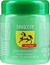 Kup Maść końska z arniką - BingoSpa Horse Ointment With Arnica