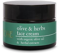 Kup Krem do twarzy z oliwą z oliwek - Yellow Rose Olive & Herbs Face Cream