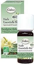 Kup Olejek eteryczny Eukaliptus kulisty - Galeo Organic Essential Oil Eucalyptus Globulus