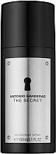 Kup Antonio Banderas The Secret - Dezodorant