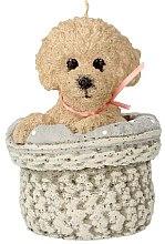 Kup Zapachowa świeca, 11 x 17 cm, pies beżowy - Artman Dog