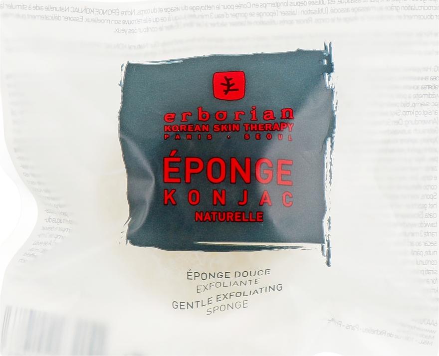 Gąbka złuszczająca do twarzy i ciała - Erborian Konjac Sponge — фото N1