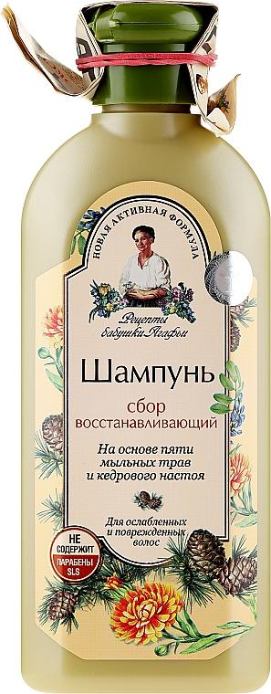 Regenerujący szampon do włosów słabych i zniszczonych - Receptury Babci Agafii