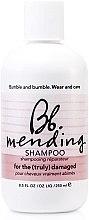 Kup Rewitalizujący szampon do włosów zniszczonych - Bumble and Bumble Mending Shampoo