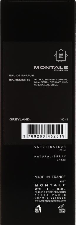 Montale Greyland - Woda perfumowana — фото N3
