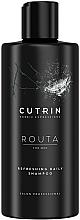 Kup Odświeżający szampon do włosów dla mężczyzn - Cutrin Routa Refreshing Daily Shampoo